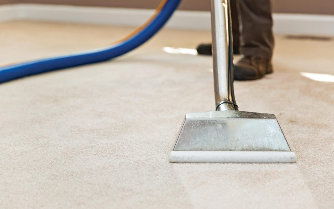 Carpet Cleaning Maryborough- The benefits of getting a carpet cleaned professionally